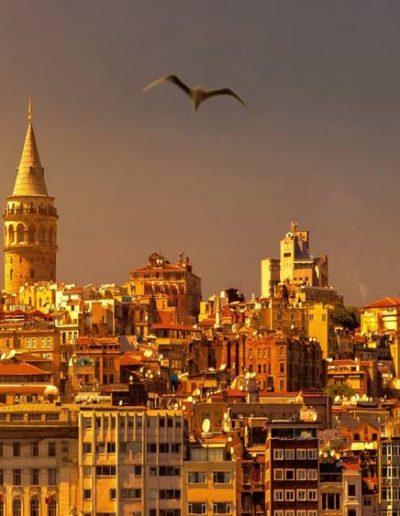 Turkey — DreamUp DMC