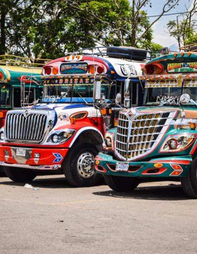 Traditional Chicken busses — Quetzal Motivo