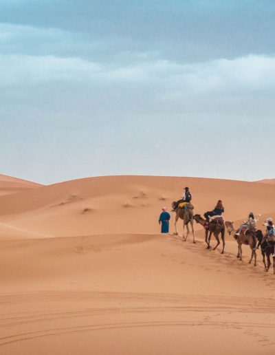 Tracking through the desert on a camels back