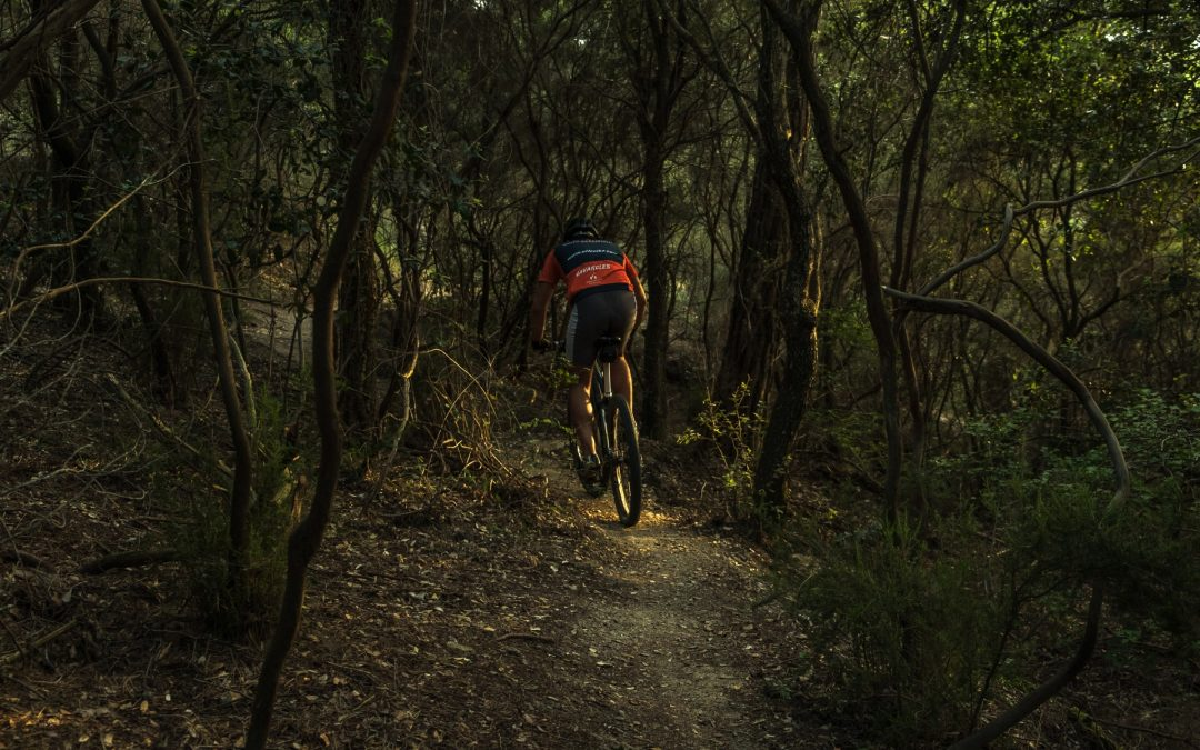 Back to Nature for Mountainbike and Inspirational Sessions